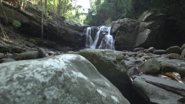 crane shot of waterfall in rainforest with rock in foreground - pianta sempreverde video stock e b–roll