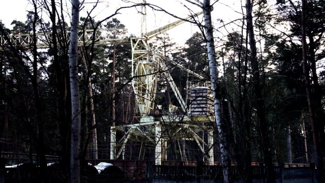 Crane work in forest time lapse video
