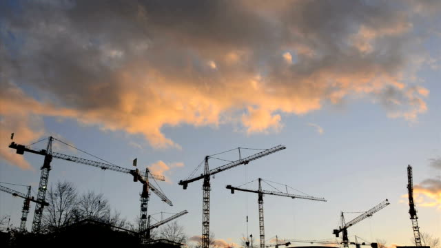 Cranes at sunset Time Lapse HD video