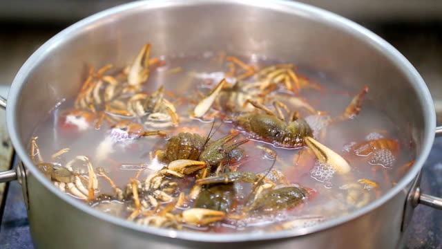 Crawfish in boiling water video