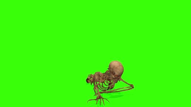 yeşil bir arka plan üzerinde saldıran iskelet crawling. cadılar bayramı konsepti. - i̇nsan i̇skeleti stok videoları ve detay görüntü çekimi