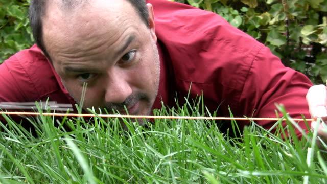 uomo pazzo taglio erba con delle forbici - forbici video stock e b–roll