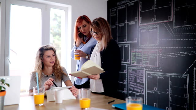 Creative business women on a meeting video