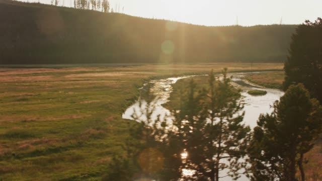 Creek flowing through Yellowstone. video