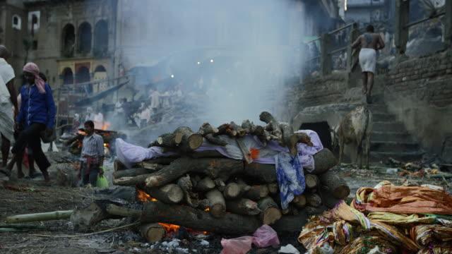 vídeos y material grabado en eventos de stock de cremacion fuego en un indio ghat. - árboles genealógicos