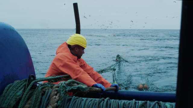 vídeos de stock, filmes e b-roll de grupo de trabalho de pescadores no navio de pesca comercial que arrasto puxa - países bálticos