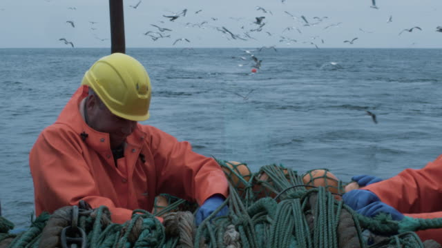 Crew of Fishermen Work on Commercial Fishing Ship that Pulls Trawl Net
