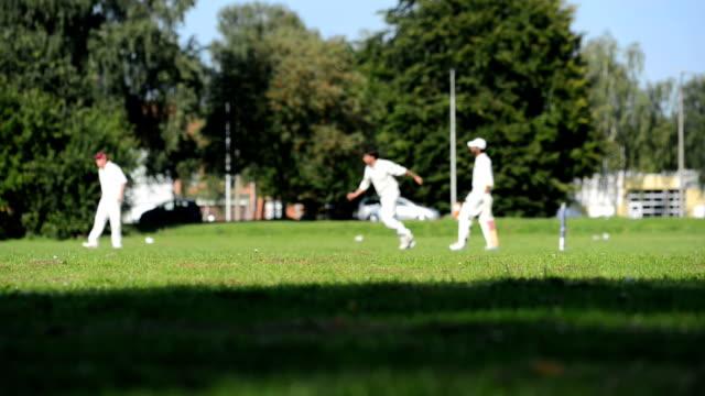 vídeos y material grabado en eventos de stock de cricket partido en bélgica - críquet