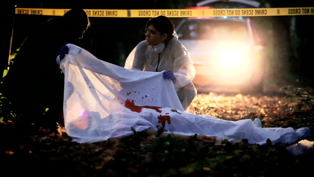 scena del crimine di indagine - cadavere video stock e b–roll