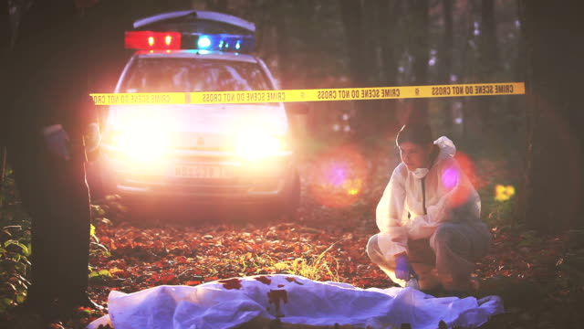 Crime Scene Investigation The forensic expert doing research of the dead body and collecting evidences at the forest. Detective is standing near the body that's covered with white sheet, now stained with the victim's blood. Evidences number can be seen near the body. Police car in background detective stock videos & royalty-free footage