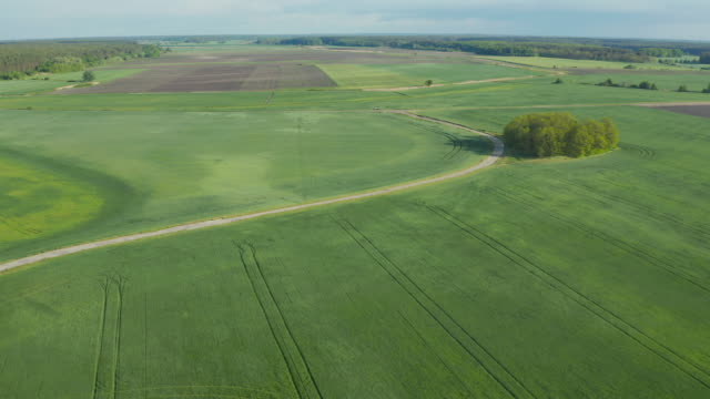 Crop and agriculture concept; drone flying over field countryside at sunny cloudy spring time. Wonderful aerial video for ecological concept. video