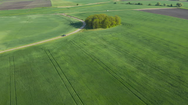 Crop and agriculture concept, drone flying over field countryside at sunny cloudy spring time. Wonderful aerial video for ecological concept. video