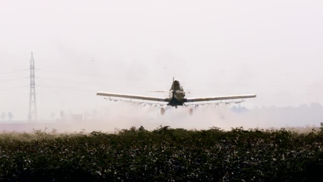 vídeos de stock e filmes b-roll de crop duster spraying chemicals over a cotton field - slow motion - algodão
