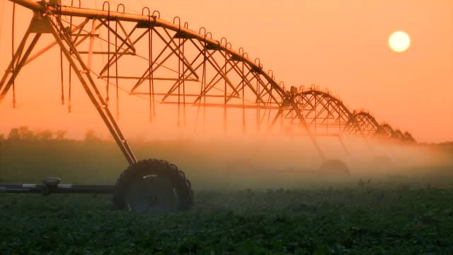 vidéos et rushes de culture irrigation au coucher du soleil - équipement agricole