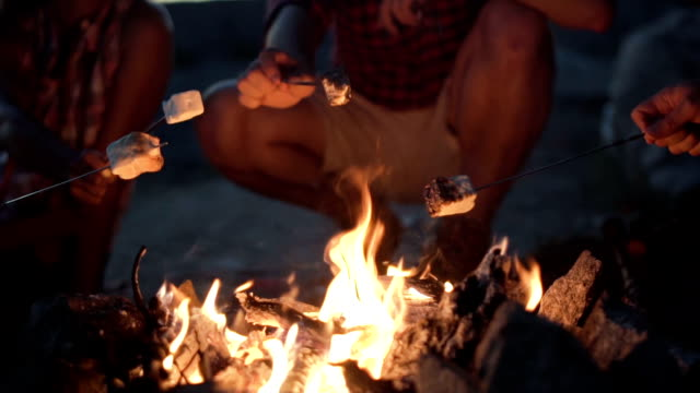 crop people grilling marshmallows in fire - falò spiaggia video stock e b–roll