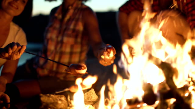 crop people grilling sausages in fire - falò spiaggia video stock e b–roll