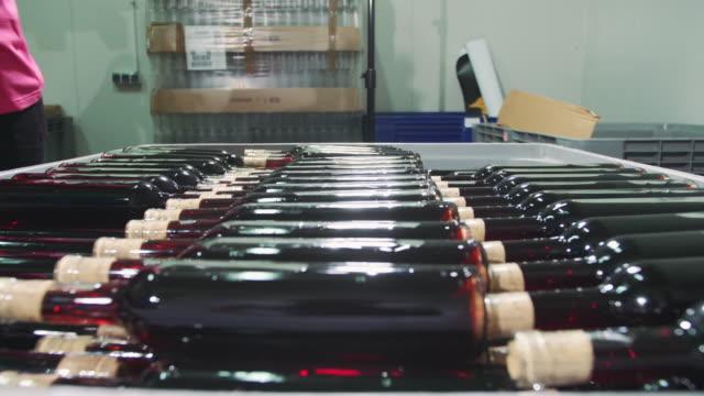 gröda arbetare att arrangera vinflaskor i behållare - wine box bildbanksvideor och videomaterial från bakom kulisserna