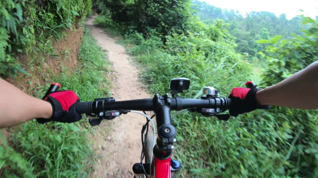 Cross country mountain biking friends in tropical forest. POV point of view .4k Cross country mountain biking friends in tropical forest. POV point of view .4k handlebar stock videos & royalty-free footage