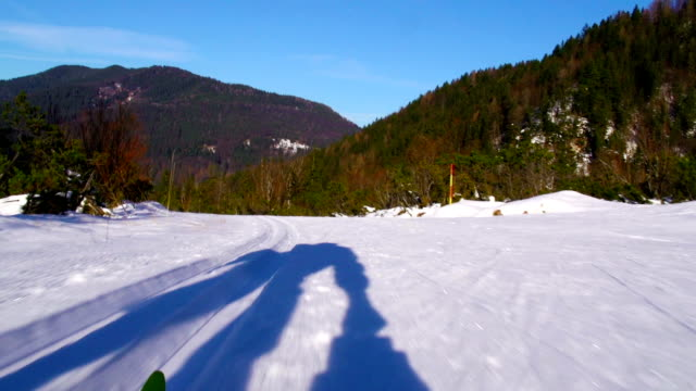 HD: Cross Country skier holding video camera video