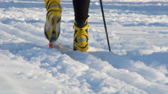 Cross country skiing 16 video