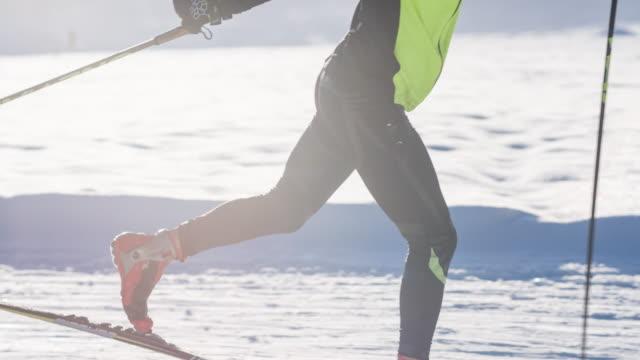 cross country skiing in idyllic winter landscape - sci sci e snowboard video stock e b–roll