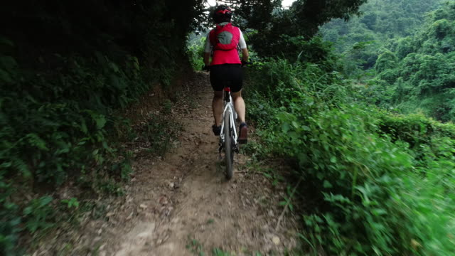 cross country woman biker in summer forest - andare in mountain bike video stock e b–roll