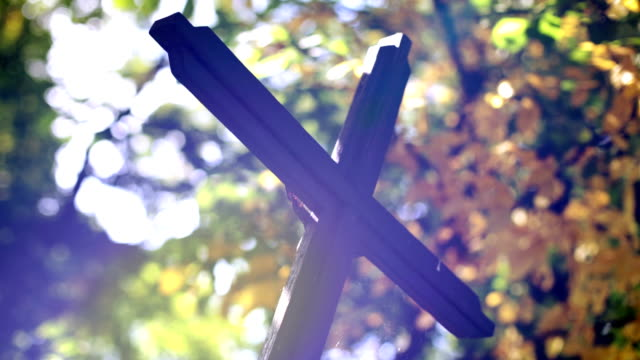 Cross in cemetery, Trees, Lights video