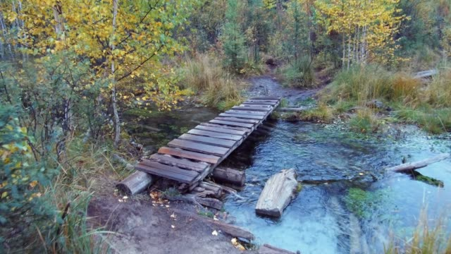 雨の日にアルタイ山脈で青い間欠泉湖付近の森林クリークの小さな木の遊歩道橋を渡ってください。 ビデオ