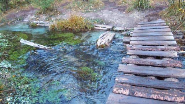 雨の日にアルタイ山脈で青い間欠泉湖付近の森林クリークの小さな木製の橋を渡る ビデオ