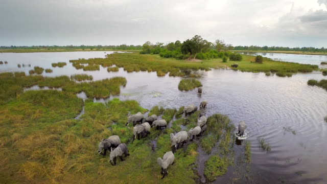 Crossing the majestic african landscape video