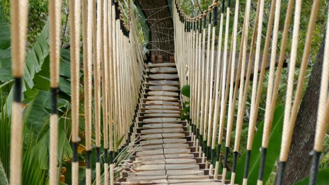 crossing the Rope Bridge video