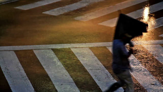 vidéos et rushes de passage pour piétons dans une rue de tokyo pendant un typhon. - desastre natural