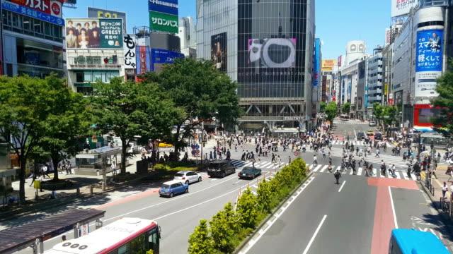クロス渋谷で日にカラス横断道路 ビデオ