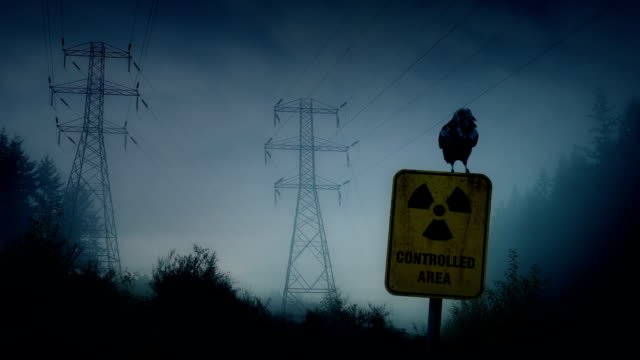 Crow Perches On Nuclear Radiation Sign video