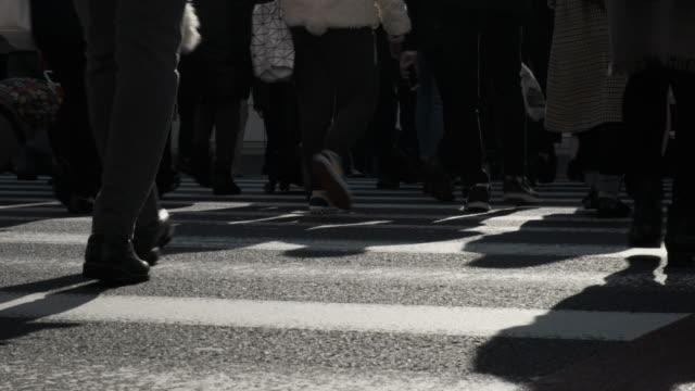 新宿、東京で横断歩道で観客 - 雑踏点の映像素材/bロール