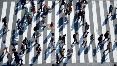 folla di pendolari che camminano all'incrocio di shibuya - people video stock e b–roll