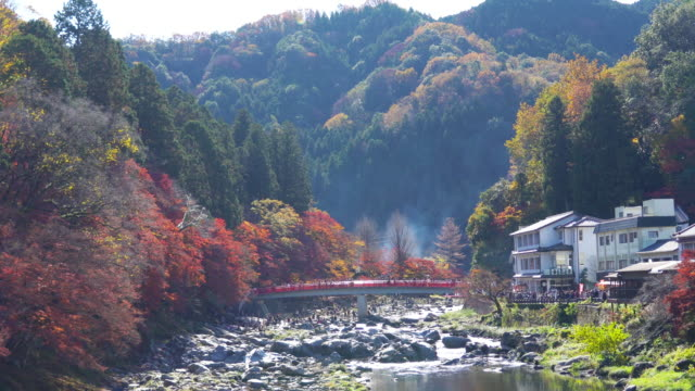 Crowd of people on red bridge with colorful Autumn leaf at Korankei,Aichi,Japan. video