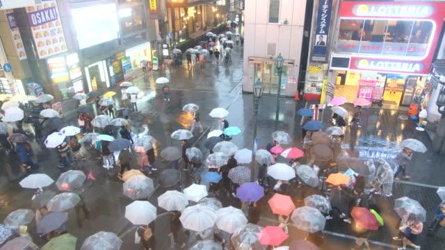 vídeos de stock, filmes e b-roll de multidão de pessoas andando com guarda-chuvas enquanto chover sobre dotonbori street, osaka, japão - chapéu
