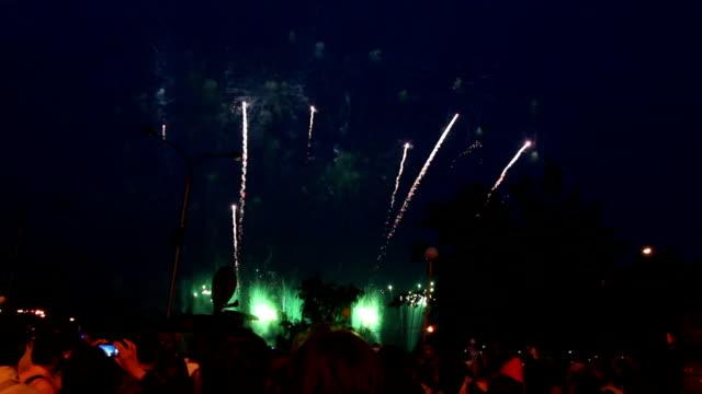 толпа людей, смотреть фейерверк - new year стоковые видео и кадры b-roll