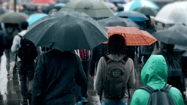 vídeos de stock, filmes e b-roll de multidão de povos com os guarda-chuvas que andam na chuva. sm. - chapéu