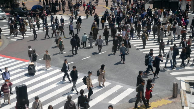 観衆が日本の渋谷のスクランブル交差点 - 交差点点の映像素材/bロール