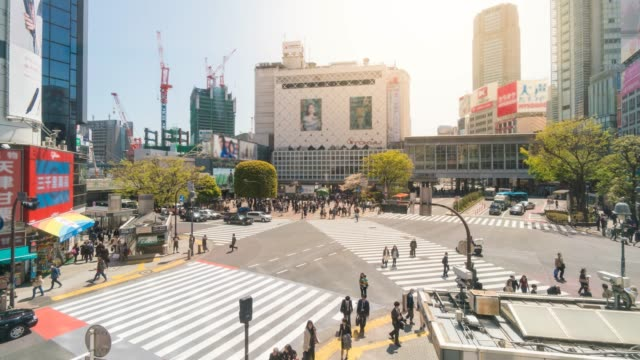 在日本涉谷, 人群穿越涉谷交叉口 - 道路交叉口 個影片檔及 b 捲影像