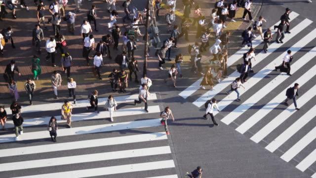 東京・渋谷でシマウマ交差点を横断する群衆。 - 雑踏点の映像素材/bロール