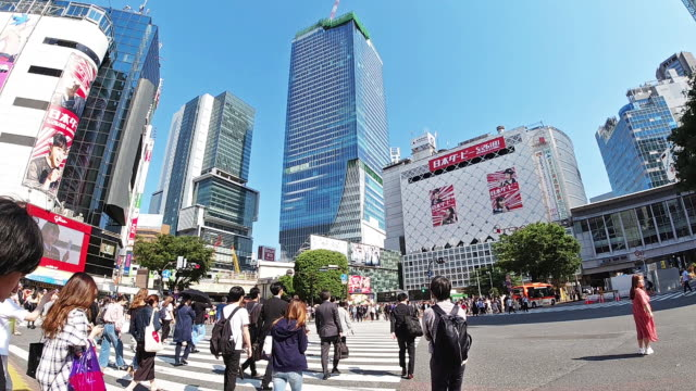 slo mo crowd people crossing zebra crossing at shinjuku ,tokyo, japan. - insegna commerciale video stock e b–roll