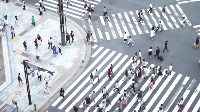 stockvideo's en b-roll-footage met menigtemensen die zebrapad, tokyo, japan kruisen. - oversteekplaats