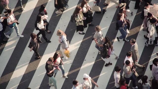 シマウマの交差点を横断する群衆、東京、日本。 - 交差点点の映像素材/bロール