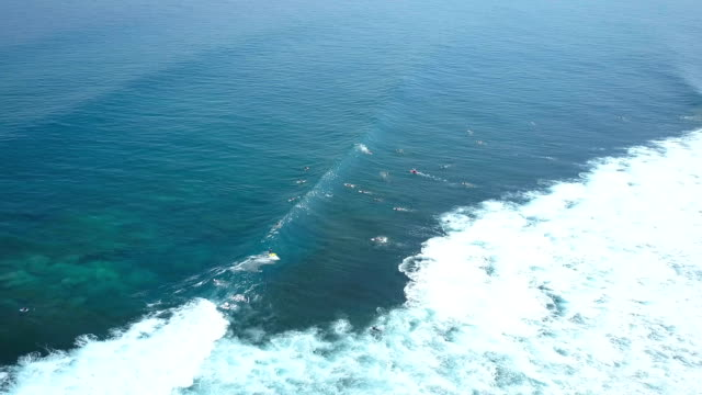 AERIAL: Crowds of unrecognizable surfers paddling towards surf lineup in Bali video
