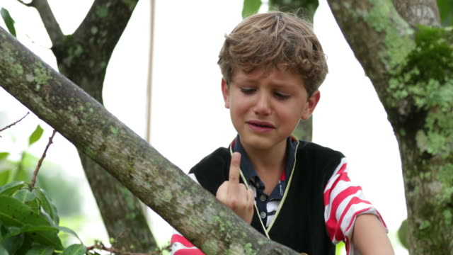 Crying infant child pointing the middle finger to camera. Inconsolable young boy cries while he gives the finger to viewer in a bashful candid manner in 4k Crying infant child pointing the middle finger to camera. Inconsolable young boy cries while he gives the finger to viewer in a bashful candid manner in 4k middle finger stock videos & royalty-free footage