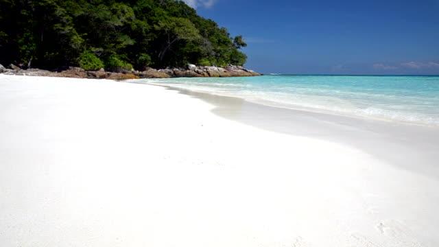 Crystal clear sea and white sand beach at Tachai island, Andaman, Thailand video