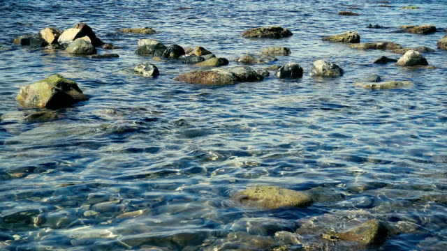 Crystal clear water on a stony shore slow motion video